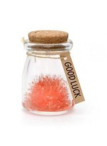 Sėkmės kristalas - gėlė, raudona, Gift Houses International